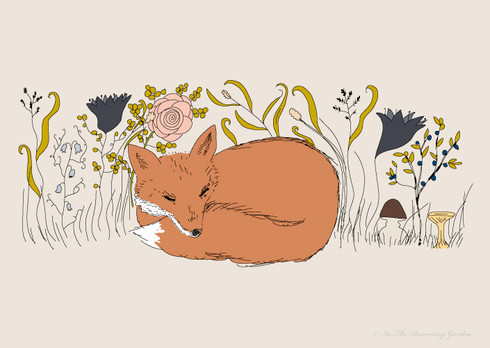 Illustration Fox
